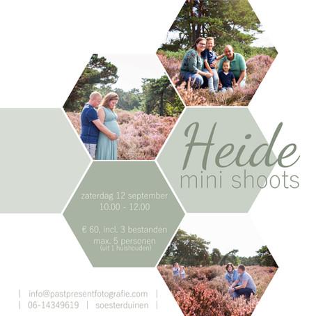 | Heide mini shoots - Deel II | Soesterduinen | fotoshoot |