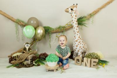 cake smash giraffe.jpg
