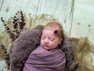 newborn foto utrecht.jpg