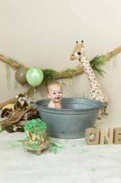 jungle cakesmash giraf.jpg