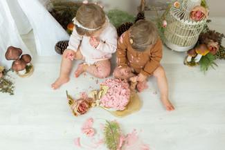 cakesmash vintage tweeling.jpg