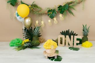 cakesmash ananas.jpg