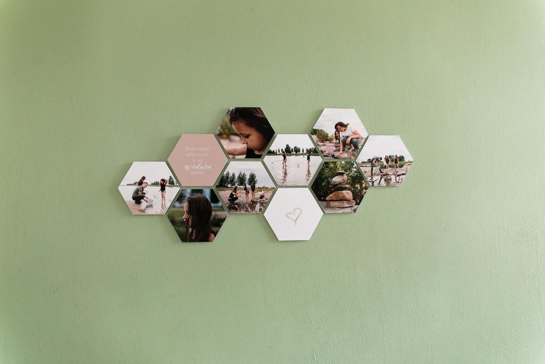 forex hexagon.jpg