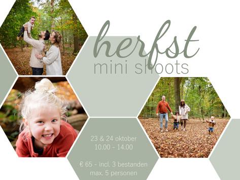 | Herfst mini shoots | Amelisweerd |