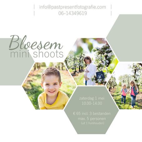 | Bloesem mini shoots | Bunnik |