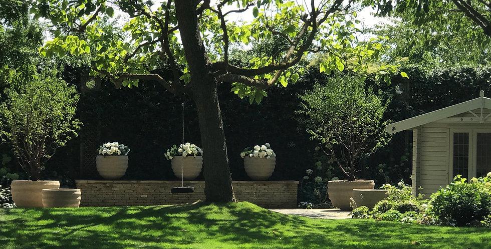 West London Garden.jpg
