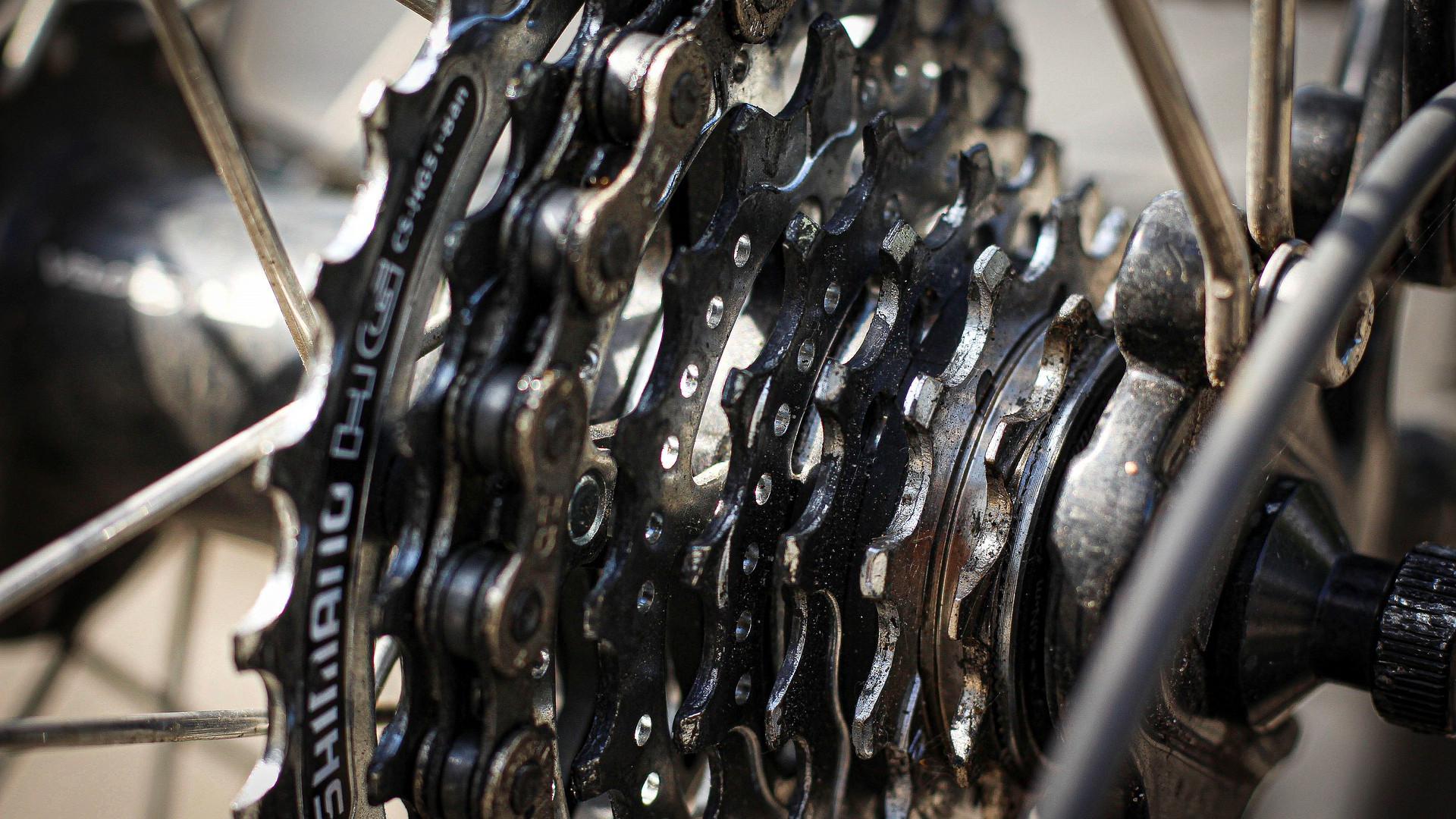 bike-4325270_1920.jpg