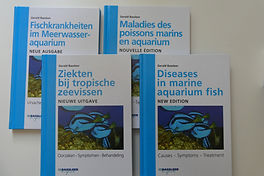 NewMarineFishDiseaseBook (3).JPG