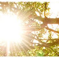 Ray of Light 2014-6-10-17:34:56