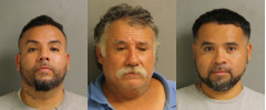 Three Brothers Arrested in Organized Crime Ring
