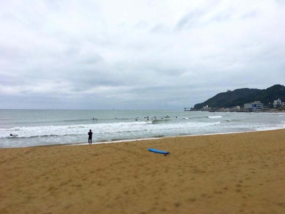 송정 서핑 데이서프