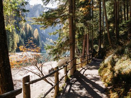 Taking Detours: An Essay for Fellow Travelers