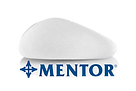 Mentor-removebg-preview.png