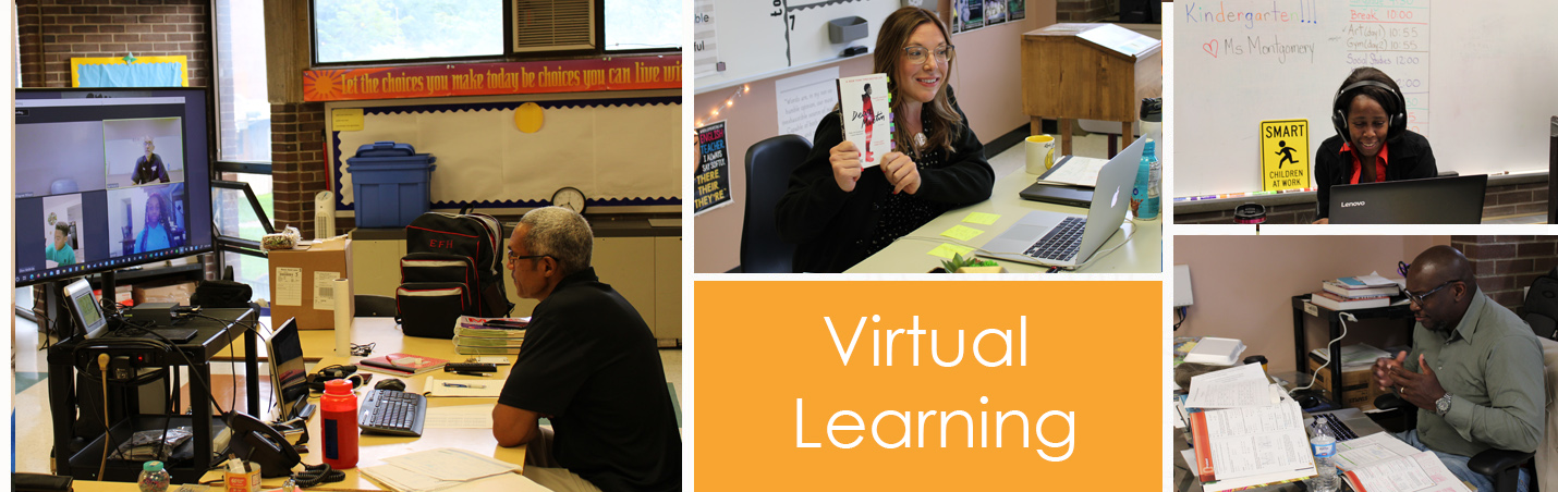 Virtual Learning 3