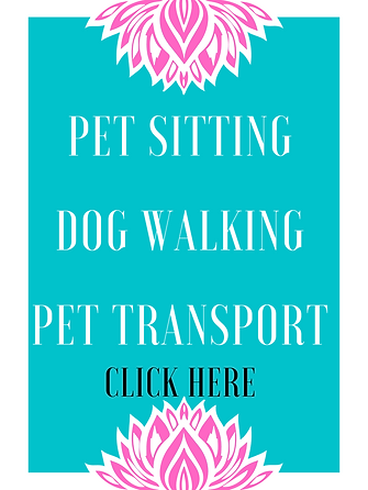Dog Walking Pet Sitting Pet Transpotatio