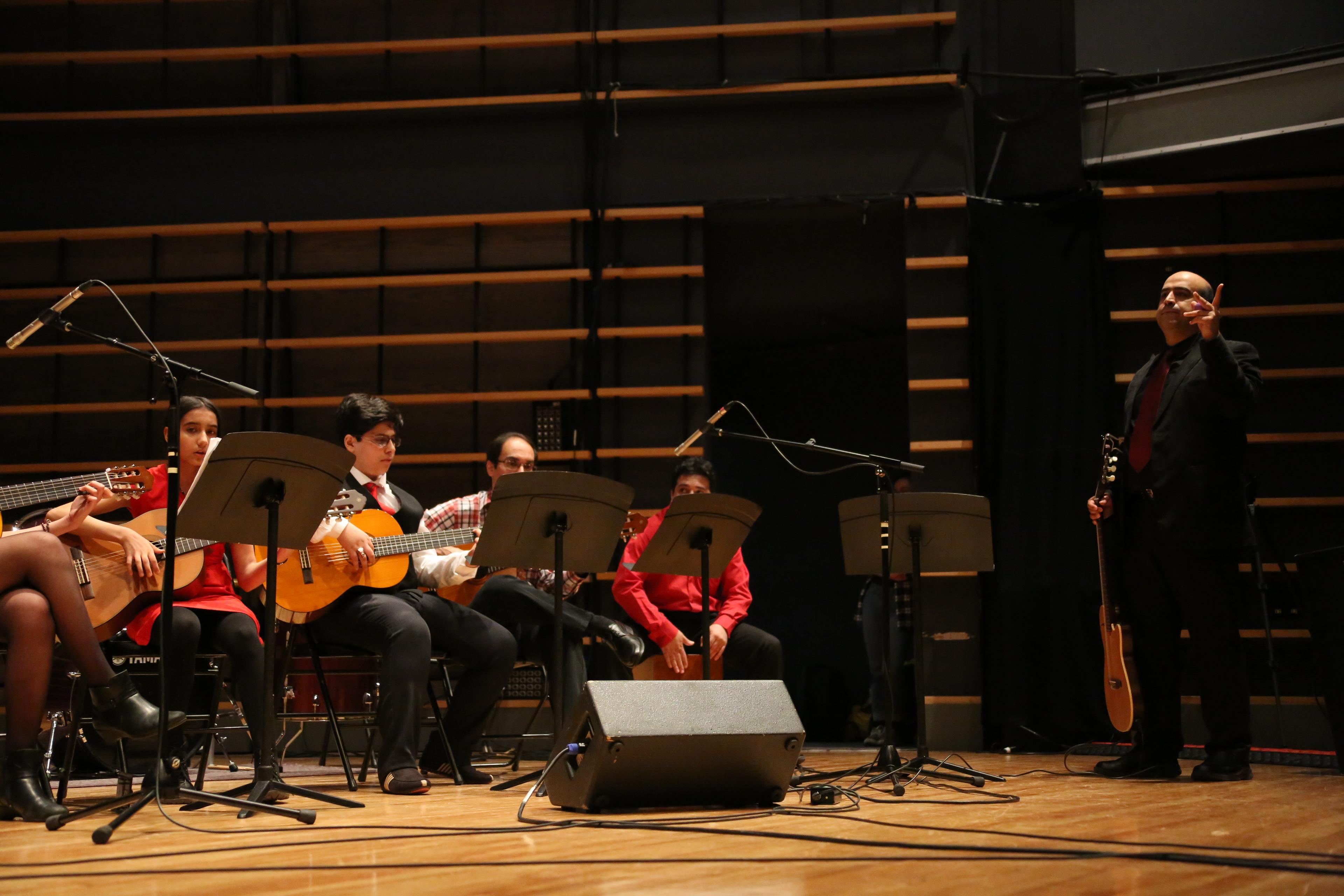 Guitar (30)