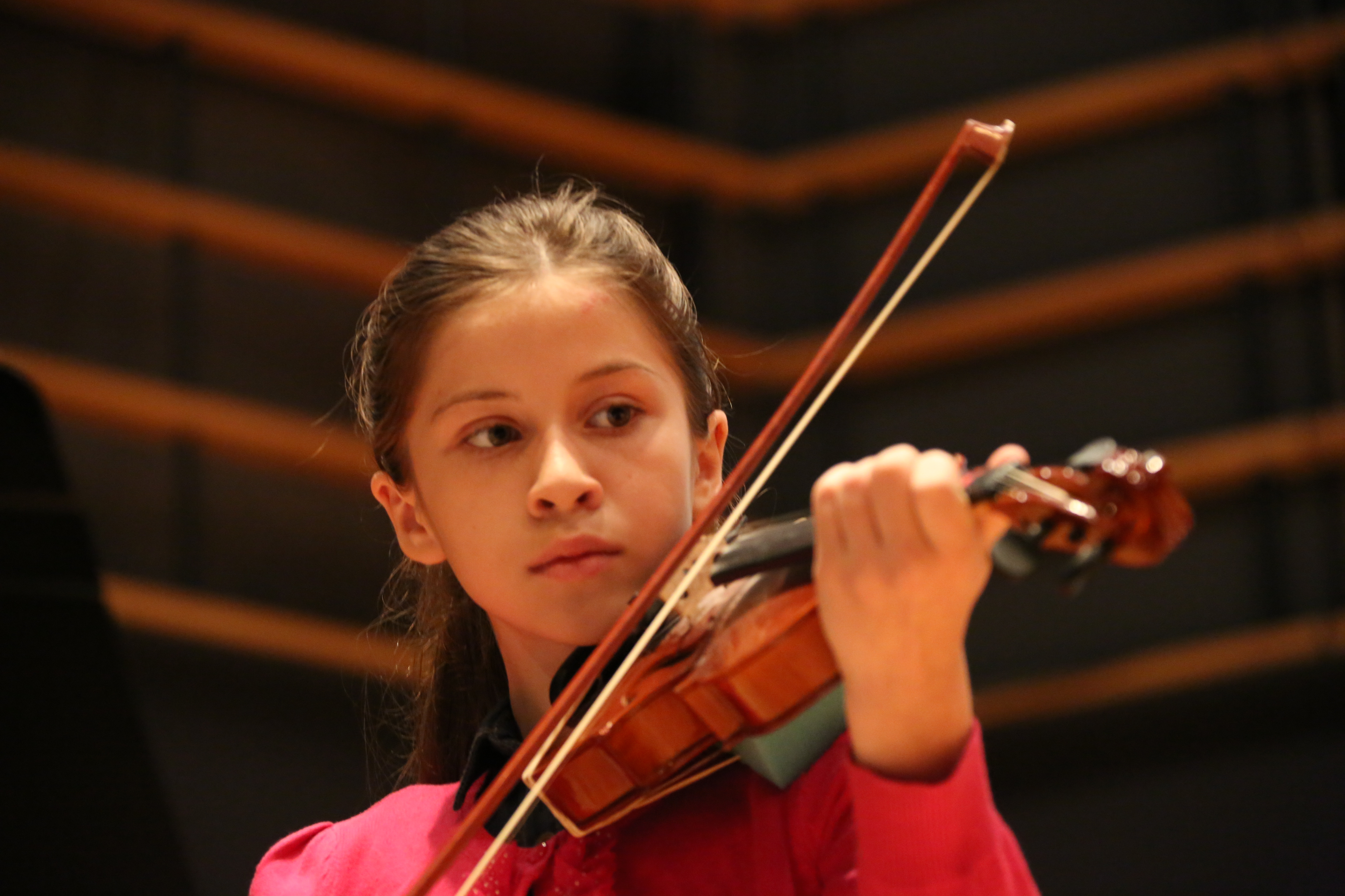 Violin (15)