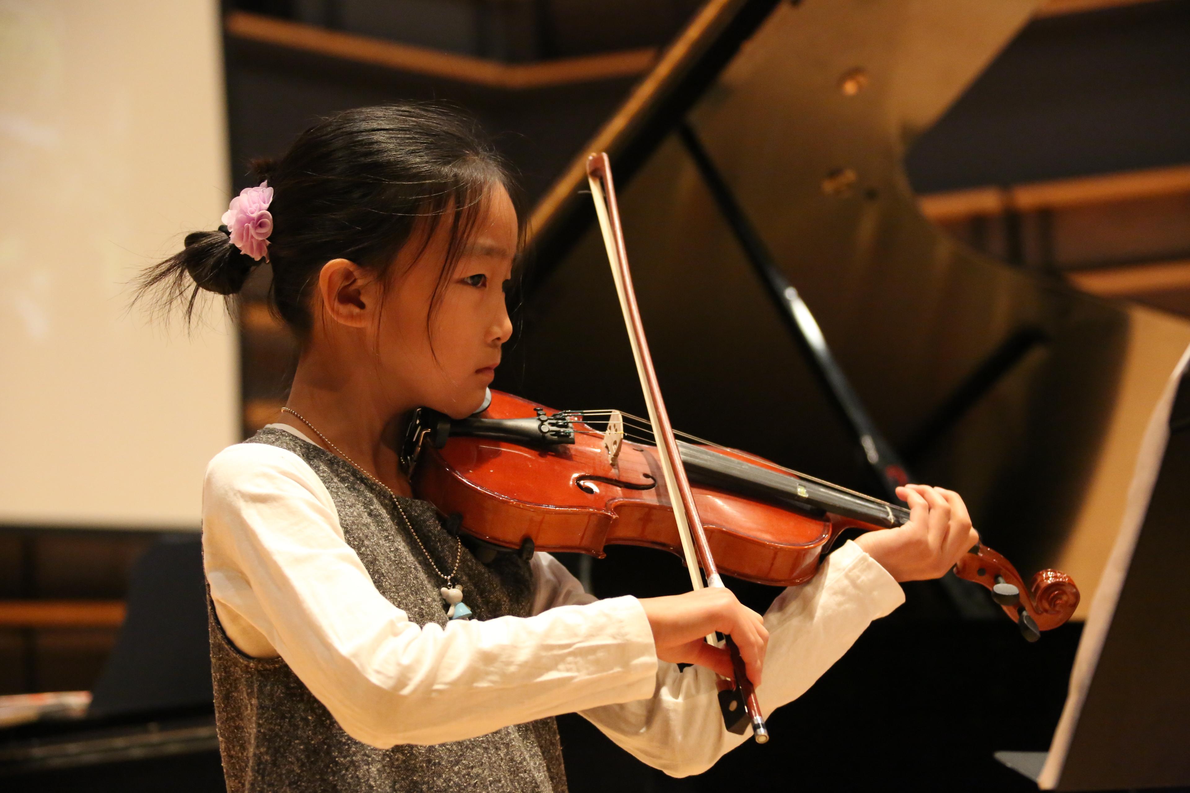 Violin (20)