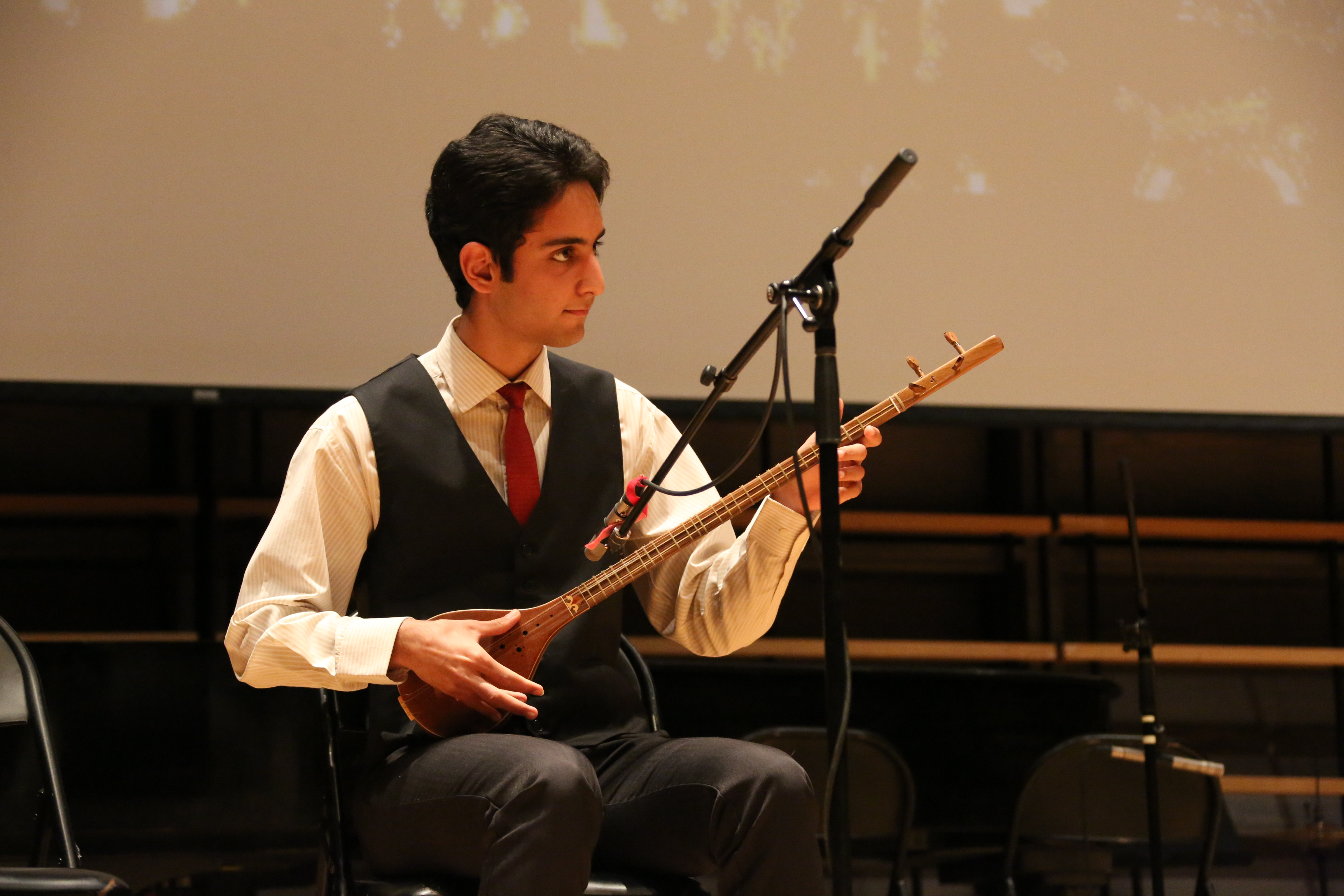 Iranian Instrument (4)