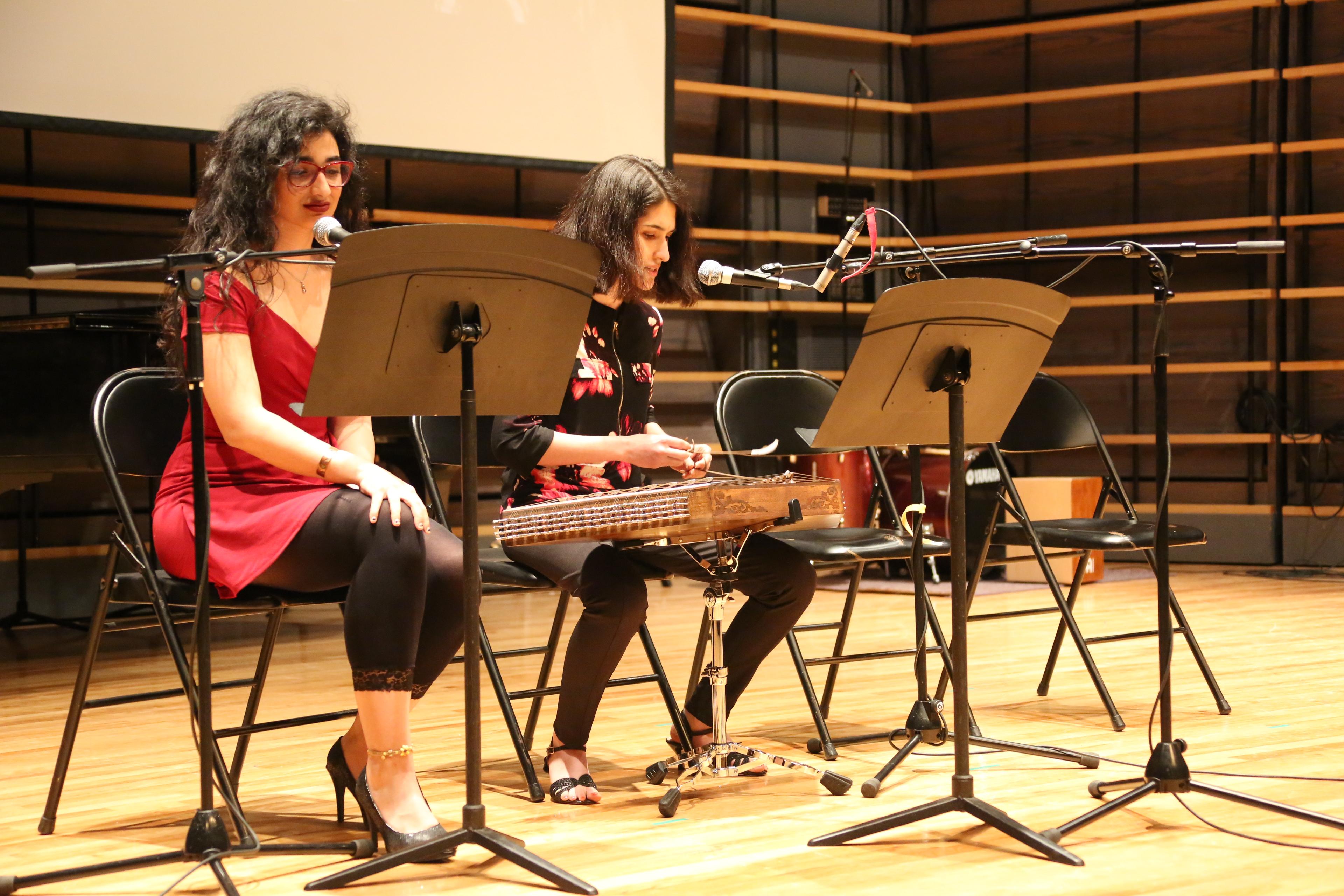 Iranian Instrument (1)