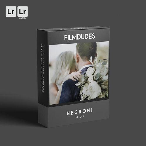 FILMDUDES Preset | NEGRONI (Lightroom Desktop & Mobile)