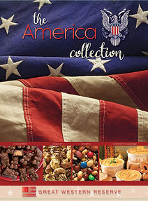 America Collection Fundraising Brochure.