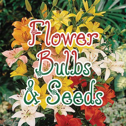flower-bulbs-seeds