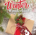 Winter Wonderland 2020.jpg