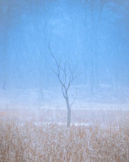 christinehof winter 2021 7 final.jpg