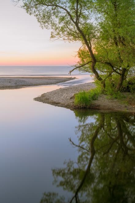 havang tree river sunrise summer 1.jpg