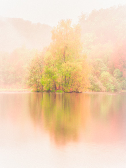 soderasen lake tree autumn 2.jpg