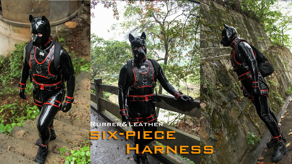 6 Pieces Harness Combination-Rubber