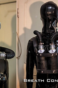 Combination of gas mask and respiratory system