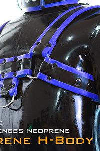 H Shaped Neoprene Cheast Harness-Blue