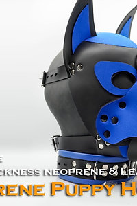 Blue-Neoprene Dog Mask/Puppy Hood