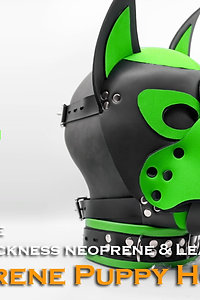 Green-Neoprene Dog Mask/Puppy Hood