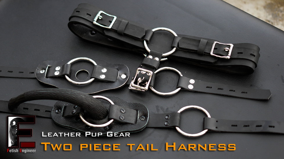 Leather Harness Kit with Tail 4 piece combination