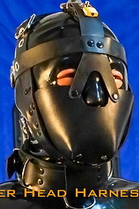 Head Harness-Leather