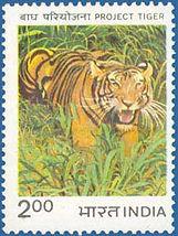 Project tiger logo