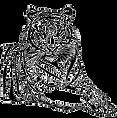 tiger_transp_edited.png