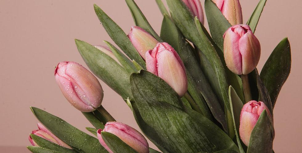Tulip Bunch   Fresh Flower Bouquet