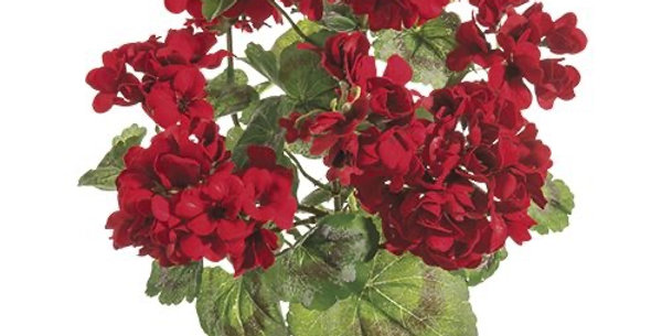Geranium Bouquet (UV Protected)