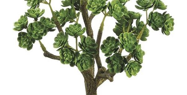 Sedum succulent bouquet