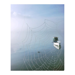 Cobweb & sea