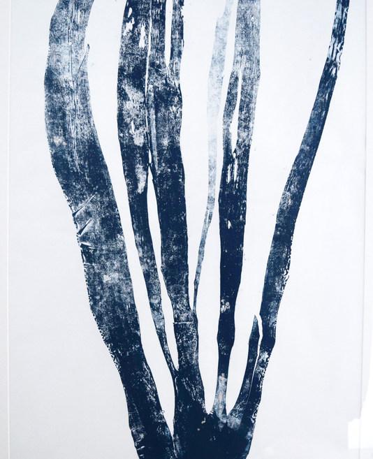 'Forest Kelp', large