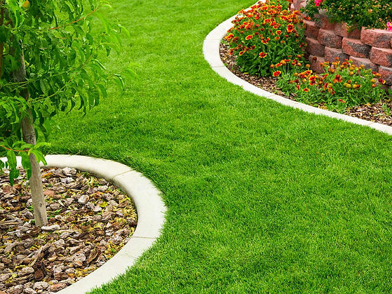 Great Looking Lawn Care Treatment.jpg