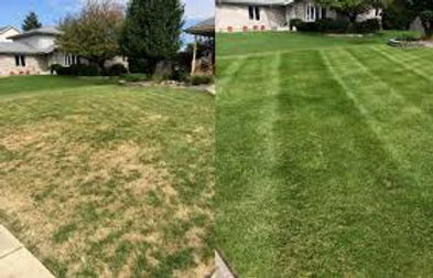Lawn Aeration Before & After.jpg