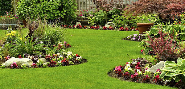 Lawn Care for beautiful lawn & landscape