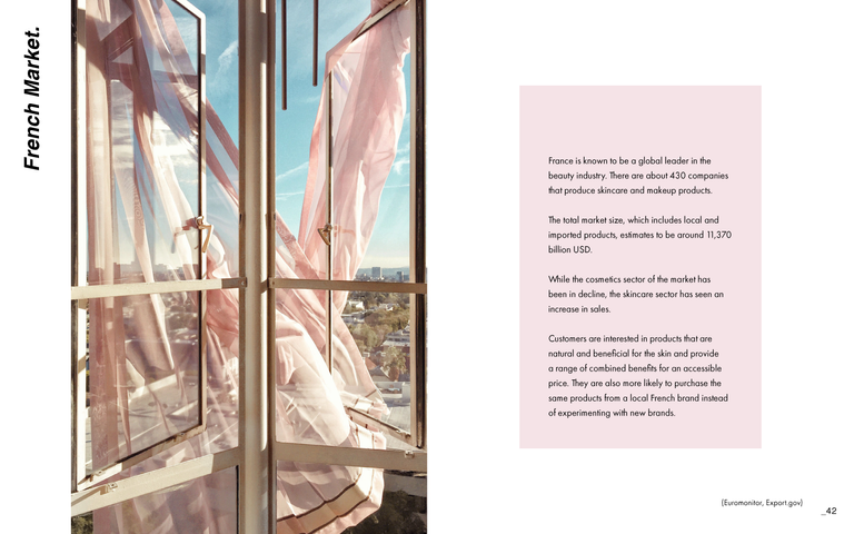 PaolaRios_Capstone_Booklet_Page_22.png