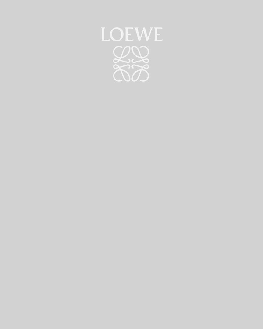 LOEWE_BrandAudit_Page_40.png